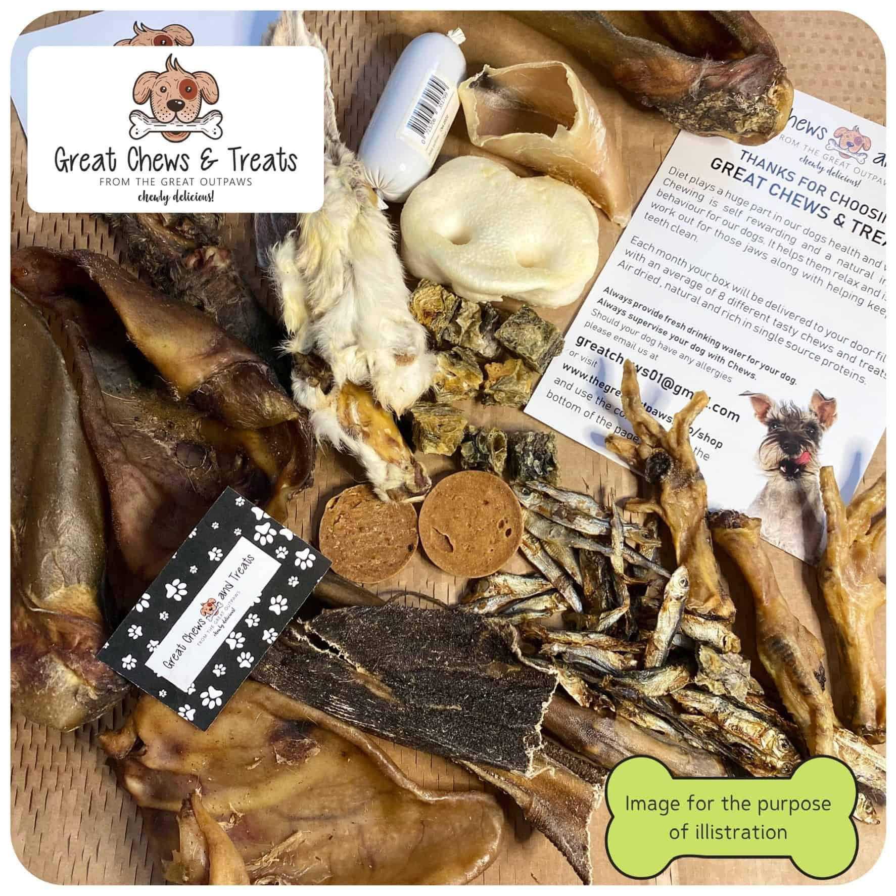 The Great OutPaws dog chews and treats subscription box